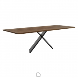 Table Bonaldo AX 250x100x75 cm