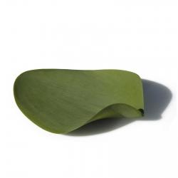 Leaf Silicone Plates Covo Seasons
