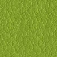 Synthetic Leather ECP - 17 Green