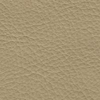 Synthetic Leather ECP - 05 Tortora