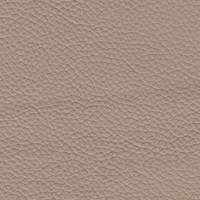 Leather - 950 Dove gray color
