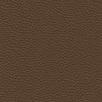 Leather - 981 Biscotto