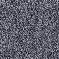 Leather - PL73 Pearly Black