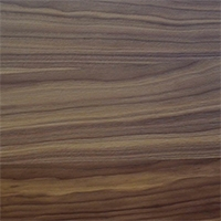 PZ51 - WOOD Canaletto walnut