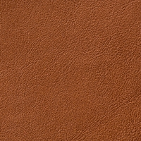 Leather - Cat. B - Leather b Anilina - 3101