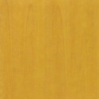 Wood - Stained beech - Mustard yellow