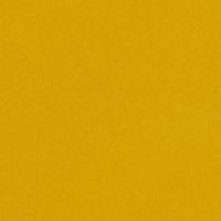 Polypropylene - Ant family - Mustard