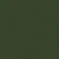Pelle - 990 Salvia