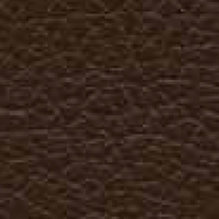 Eco Leather - Ginkgo - 013320 49