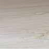 Wood - Bleached Oak - RO 03