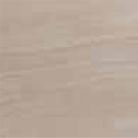Wood - Aniline White Beech - FA 03