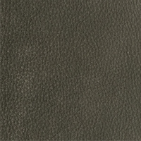 Leather - Arizona - 4088