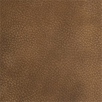 Leather - Arizona - 4084