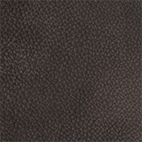 Leather - Arizona - 4086