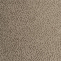 Leather - Royal - 2361 - cloudy effect