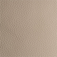 Leather - Royal - 2360 - cloudy effect