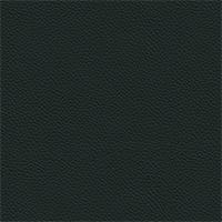 Leather - 980 Ottanio
