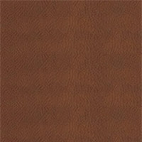 K_59 - Cognac thick leather