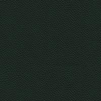 Leather - 987 Sherwood