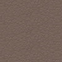Eco-leather - S_51 - Mud