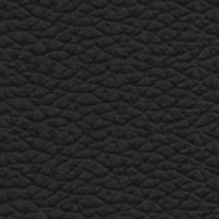 Leather - P_2 - Black