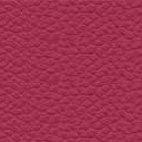 Leather - P_66 - Fuchsia