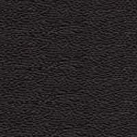 Grain leather - PF_2 - black