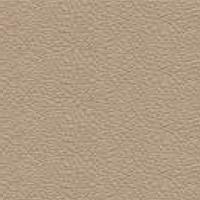 Grain leather - PF_47 - face powder
