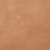 Eco-leather - Grain - R45 Sahara