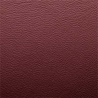 Leather - M58 - Bordeaux